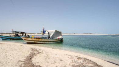 Photo of جزيرة جربة… تأثيرات جائحة كورونا على قطاع الصيد البحري