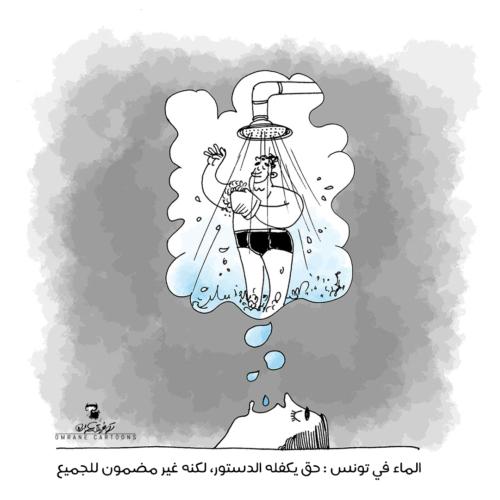 الماء في تونس